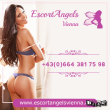 EscortAngelsVienna - logo